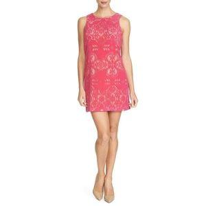 Cynthia Steffe ANNA Pink Flocked Lace Dress